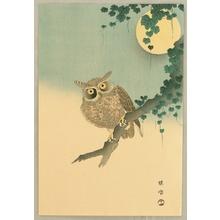 Kono Bairei: Eagle Owl - Artelino