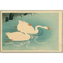 小原古邨: Two Swans - Artelino