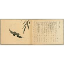 Onoda Ryugin: Training Manual for New Japanese Painting - Vol.4 - Artelino