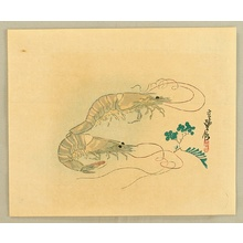Hasegawa Sadanobu III: Prawn - Artelino