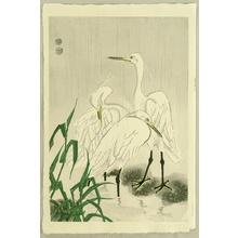 Kotozuka Eiichi: Herons in Rain - Artelino