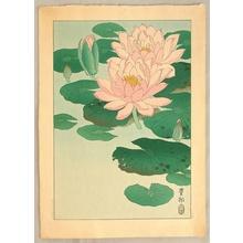 Ohara Koson: Pink Water Lilies - Artelino