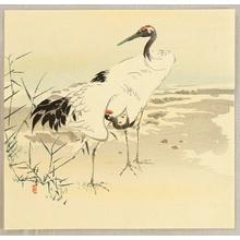 酒井抱一: Cranes - Artelino