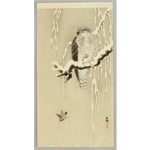 Ohara Koson: Goshawk and Sparrows - Artelino
