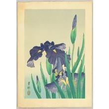 小原古邨: Flowering Iris - Artelino