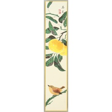 Fukuda Suiko: Bird and Orange - Artelino