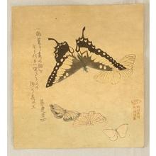 Kubo Shumman: Butterflies - Artelino