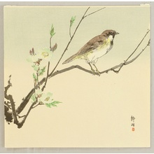 Unknown: Bird and Plum - Artelino
