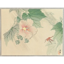 Yamamoto Shunkyo: Rose Mallow and dragonfly - Artelino