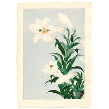 小原古邨: White Lily - Artelino