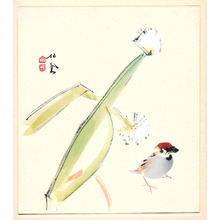 Takeuchi Seiho: Sparrow and Plants - Artelino