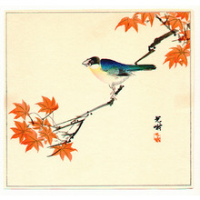 飯島光峨: Bird and Maple Tree - Artelino