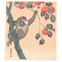 Ohara Koson: Monkey, Wasp and Persimmons - Artelino