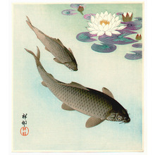 Ohara Koson: Two Carp and Water Lilly Pad - Artelino