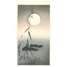 Ohara Koson: Sleeping Ducks - Artelino