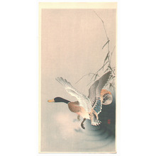 Ohara Koson: Mallard Flying from a Pond - Artelino