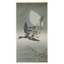 Ohara Koson: Two Mallards - Artelino