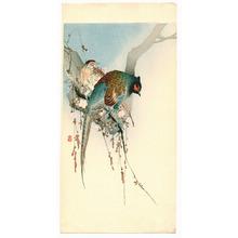 Ohara Koson: Two Pheasants - Artelino
