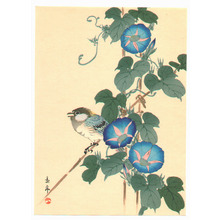 今尾景年: Bird and Blue Morning Glories - Artelino