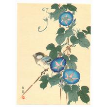 Imao Keinen: Bird and Blue Morning Glories - Artelino