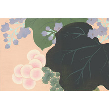 Kamisaka Sekka: Flowers and Leaves - Momoyo Gusa - Artelino