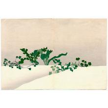 神坂雪佳: Green Plants - Momoyo Gusa - Artelino