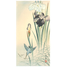今尾景年: Kingfisher and Irises - Artelino