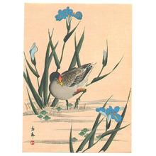 Imao Keinen: Bird among Blue Irises - Artelino