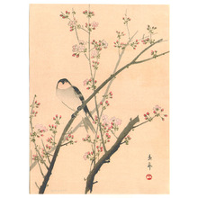 Imao Keinen: Bird on Pink Blossoming Branch - Artelino