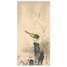 Imao Keinen: Bird on a Tree Stump - Artelino