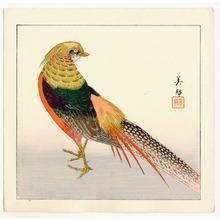 Takahashi Biho: Pheasant - Artelino