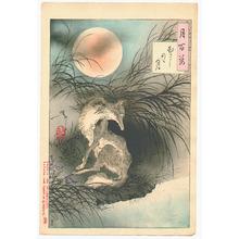 月岡芳年: Musashi Plain Moon - Tsuki hyakushi # 91 - Artelino