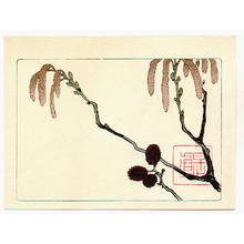 Shibata Zeshin: Seed Pods - Hana Kurabe - Artelino