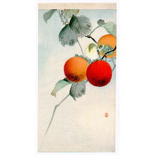 Ohara Koson: Nuthatcher atop Persimmon (Muller Collection) - Artelino