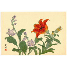 Ogata Korin After: Lilly and Hosta (Muller Collection) - Artelino