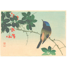 Ito Sozan: Blue Head Bird on Nanten Tree (Muller Collection) - Artelino