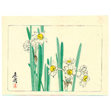 Shibata Zeshin: White Daffodils - Hana Kurabe - Artelino