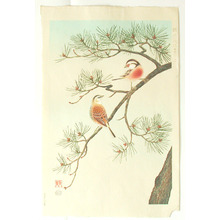 Ashikaga Shizuo: Birds and Pine - Artelino