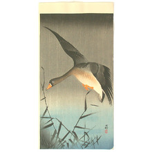 Ohara Koson: White-fronted Goose (Muller Collection) - Artelino