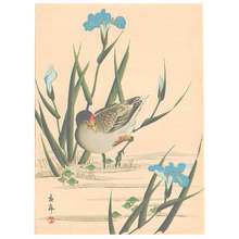 Imao Keinen: Bird among Blue Irises (Muller Collection) - Artelino