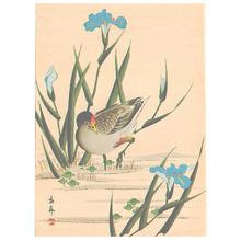 今尾景年: Bird among Blue Irises (Muller Collection) - Artelino