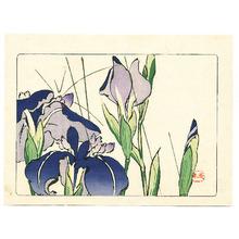 Shibata Zeshin: Iris - Hana Kurabe - Artelino