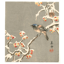 Takahashi Biho: Bird on Snow Covered Berry Branch (Muller Collection) - Artelino