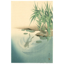 Watanabe Seitei: Two Frogs in a Pond (Muller Collection) - Artelino