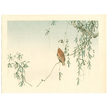 Watanabe Seitei: Sparrow on Willow Tree (Muller Collection) - Artelino