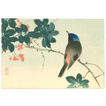 Ito Sozan: Blue Head Bird on Nanten Tree - Artelino