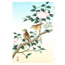 Ashikaga Shizuo: Yellow Finch - Artelino