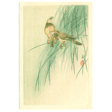 小原古邨: Two Birds (small print) (Muller Collection) - Artelino