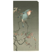 Watanabe Seitei: Two Blue Birds at Night (Muller Collection) - Artelino