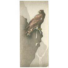 Unknown: Eagle (Muller Collection) - Artelino